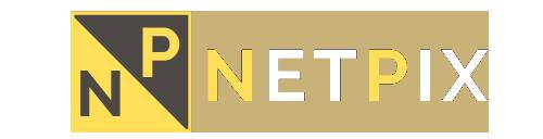 netpix logo weboldal készítés gyöngyös